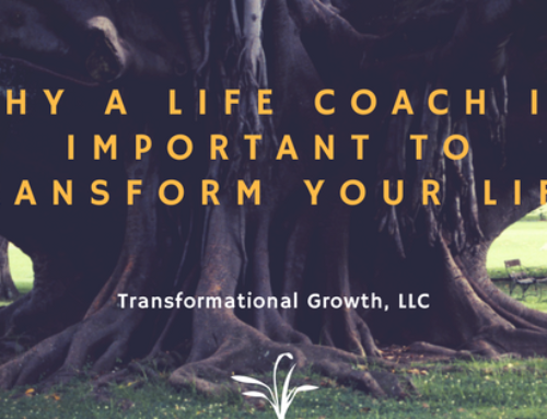 Life Coach in Rancho Cucamonga | Why Life Coach is Important